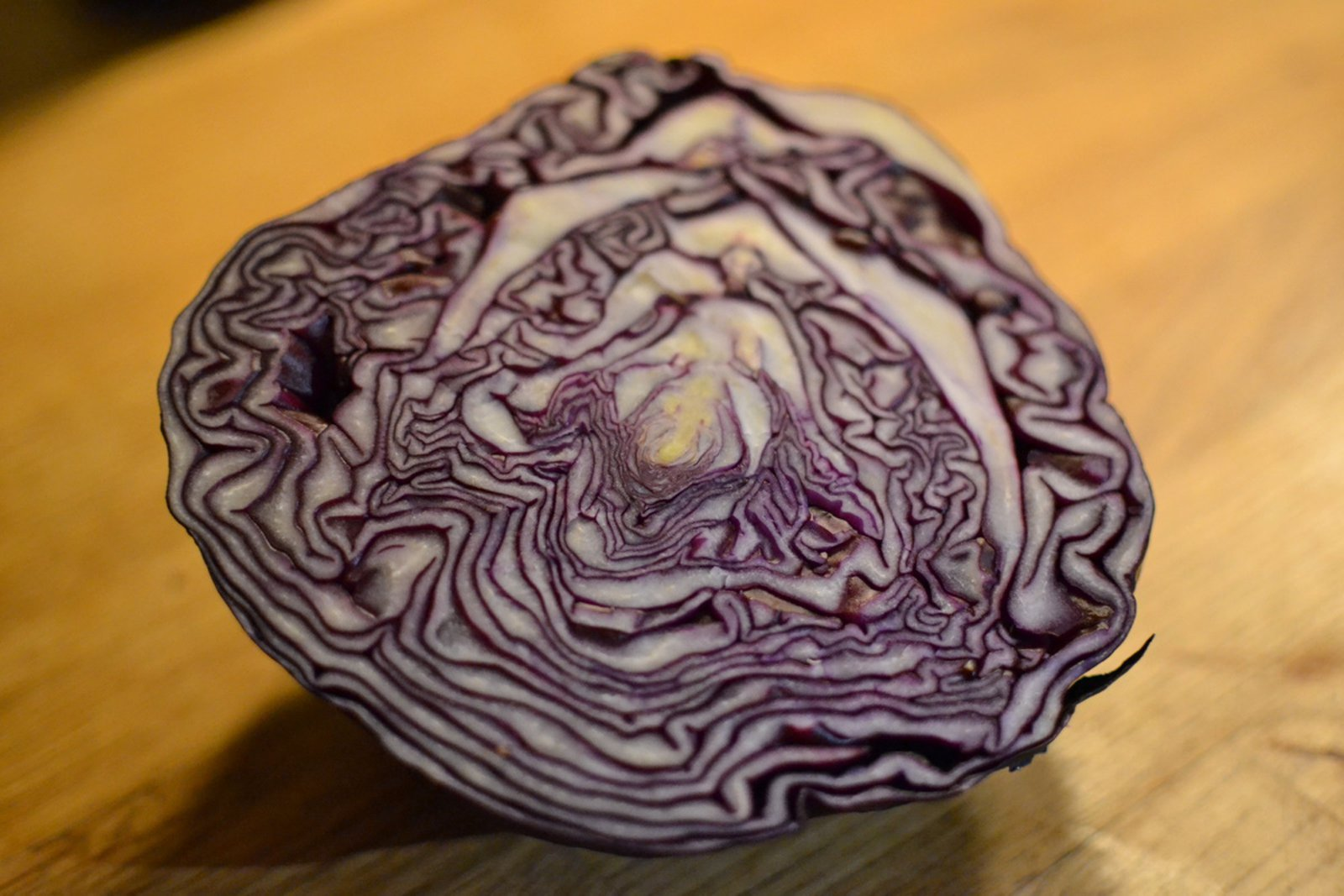 redcabbage